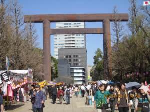 29_photo11