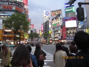 32_photo14