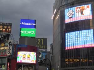 33_photo1