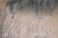 Calligraphie végétale