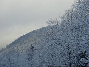 8_Vosges 366
